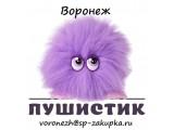 Логотип СП Пушистик - Воронеж