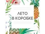 Логотип Лето в коробке